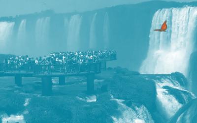 La Disrupción en las Cataratas de Iguazú